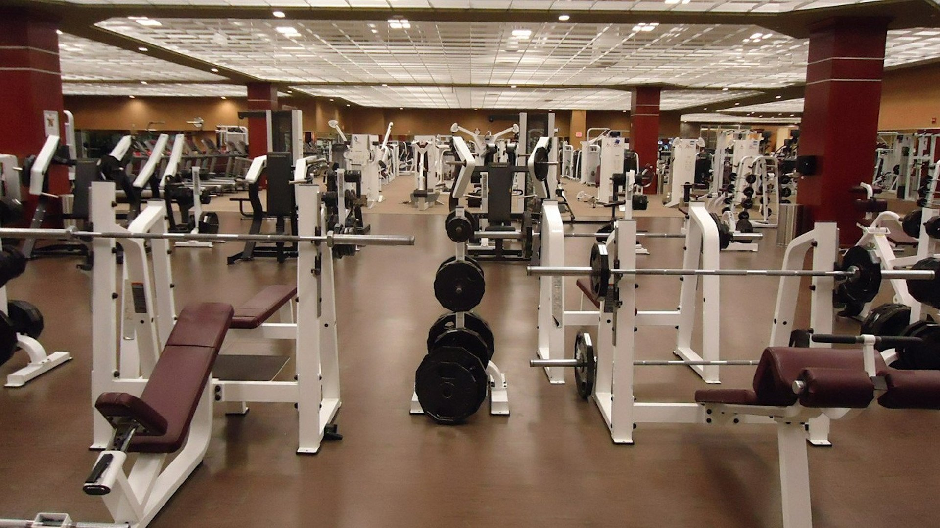 Health Club Lighting Solutions Willow Electrical Supply